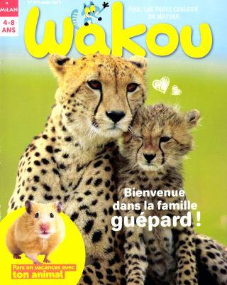 WAKOU DECOUVERTES   ( pour une livraison à domicile )
